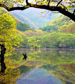 Depiction of Juwangsan_National_Park